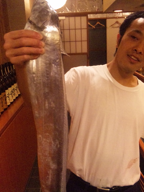 明石海峡の太刀魚