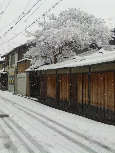 どか雪の大晦日